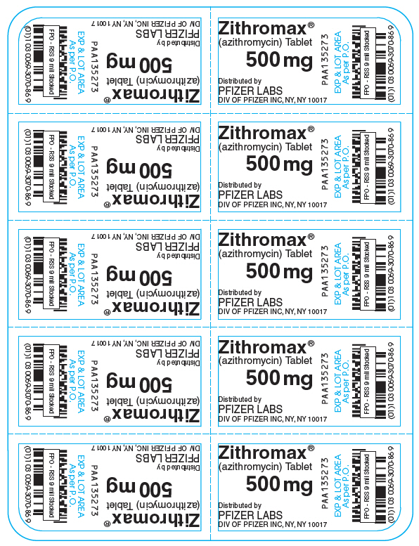 PRINCIPAL DISPLAY PANEL - 500 mg - 10 ct. Blister Card